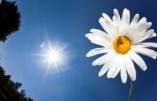 Solstițiu de vară: 21 iunie, cea mai lungă zi din an. Tradiţii şi supertiţii