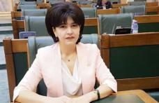 """Comunicat: Doina Federovici, vicepreședinte PSD - """"România are nevoie de stabilitate pentru a continua realizarea investițiilor și creșterile veni"""