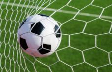 FC Botoșani își face echipă satelit la Dorohoi