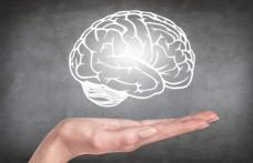Exerciții pentru creier: cum întărim puterea de concentrare și memoria