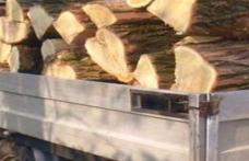 Material lemnos confiscat de polițiștii botoșăneni