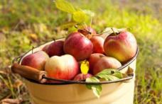 Tradiții și obiceiuri de Sfântul Ilie: De ce se dau mere de pomană