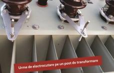 Victime din ignorarea pericolelor electrice