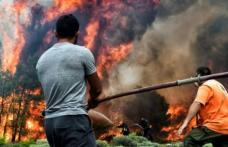 """Infernul din Grecia, văzut prin ochii unei românce care locuieşte în Atena: """"A venit vârtej de foc, era vânt cu foc"""""""