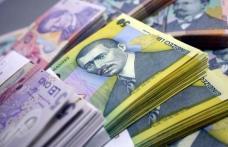 Ajutoare de urgenţă de la Guvern, alocate unor familii sau persoane singure din judeţul Botoșani, cu probleme financiare sau de sănătate
