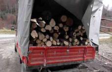 """Transporta ilegal lemn! A rămas şi fără """"marfă"""" s-a ales și cu o amendă """"generoasă"""""""