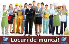 Ofertă AJOFM Botoșani: 1742 locuri de muncă disponibile. Vezi lista completă!