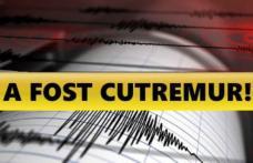 Cutremur cu magnitudinea 4,2 în Vrancea