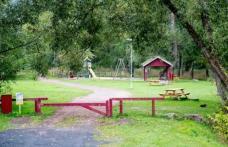 Român ucis într-un parc din Suedia. Imagini cu victima, pe rețelele de socializare