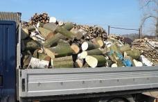 Material lemnos confiscat de poliţişti pe raza oraşului Ştefăneşti