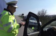 32 de permise reținute de polițiștii din Botoșani în doar șapte zile