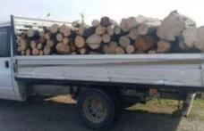 Transport ilegal de lemne confiscat de poliţiştii din Dorohoi