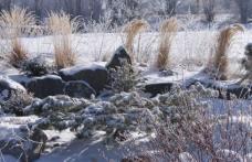 Veşti sumbre. Iarna vine mult mai devreme!