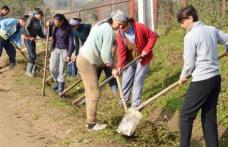 Comunicat DAS Dorohoi privind efectuarea activităţilor sezoniere de către beneficiarii de ajutor social