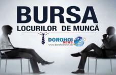 """AJOFM Botoșani organizează """"Bursa generală a locurilor de muncă"""" la Dorohoi"""