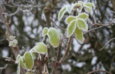 Prognoza meteo: Când scăpăm de aerul polar. De când se încălzeşte, în ce regiuni lovesc ploile şi unde se anunţă ninsori