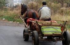 De beat ce era, un căruțaș a căzut din atelaj și a ajuns la spital