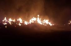 Șocant! Incendiul de la Carasa provocat de un angajat nemulţumit de leafa primită