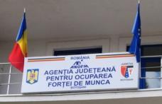 Prima de activare în valoare de 1.000 lei neimpozabilă poate fi solicitată de la AJOFM Botoșani