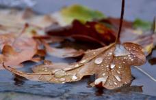 PROGNOZA METEO: Ploile ne mai dau răgaz câteva zile, dar se întorc spre sfârşitul săptămânii