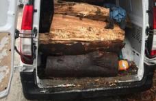 Amendă serioasă primită de un suceavean prins cu lemne fără documente legale
