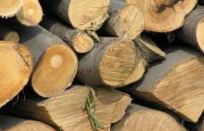 Material lemnos fără documente confiscat de polițiști la Văculești