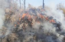 90 de tone de furaje distruse într-un incendiu, la Bobulești - FOTO