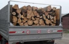 Tânăr prins de polițiștii din Dorohoi că transporta lemne fără aviz