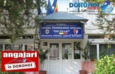 """Școala """"Ion Pillat"""" Dorohoi organizează concurs pentru două posturi de îngrijitor și un post de șofer. Vezi detalii!"""