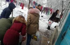 """Elevii voluntari de la Școala Gimnazială """"Gheorghe Coman"""" din Brăești - FOTO"""