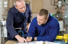 Ucenicia la locul de muncă și stagiul profesional – măsuri de stimulare a ocupării forței de muncă