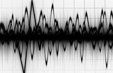 Cutremur cu magnitudine 3.1 în Vrancea