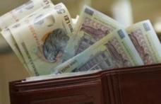 Guvernul îngheață oficial salariile bugetarilor în 2019. A adoptat ordonanța de urgență