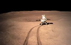 Noi informații despre prima sămânță care a încolțit pe lună. Vezi anunțul cercetătorilor