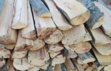 Material lemnos confiscat de polițiști la Vorona