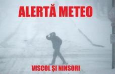 NEWS ALERT: Judeţul Botoșani sub avertizare de COD GALBEN de ninsori abundente şi viscol, începând din această noapte