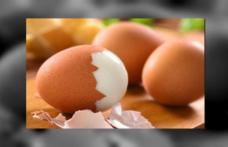 Cele mai cunoscute mituri despre consumul de ouă