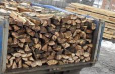 Acţiunea Scutul Pădurii: Amendă de 5 mii de lei transport de lemne fără documente legale
