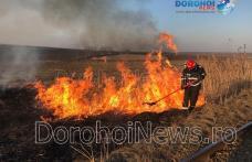 Incendiu în Dorohoi! Aproximativ zece hectare de vegetație uscată și stuf distruse de flăcări - FOTO