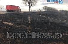 Circulație blocată pe drumul național 29B Dorohoi - Botoșani din cauza incendiilor de vegetație - FOTO