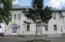 """Liceul Teoretic """"Anastasie Bașotă"""" Pomârla organizează licitație de masă lemnoasă. Vezi detalii!"""