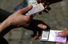 Traficul cu ţigări de contrabandă, una dintre principalele infracţionalităţi din județul Botoșani