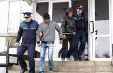 Trei tineri din Dorohoi prinși la furat de administratorul unei societăţi comerciale
