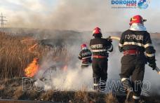 Dezastru în județ din cauza focurilor scăpate de sub control