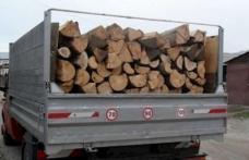 Transport ilegal de lemne, descoperit în trafic de poliţiştii din Dorohoi