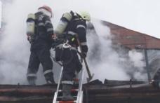 Incendiu la un adăpost de animale din Dumeni! Pompierii dorohoieni au intervenit pentru stingere – FOTO