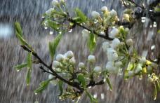 Vremea rămâne rece şi ploioasă. Cum va fi săptămâna viitoare