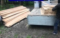 """Transporta ilegal lemn! A rămas şi fără bani şi fără """"marfă"""""""