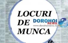 775 locuri de muncă disponibile în județul Botoșani