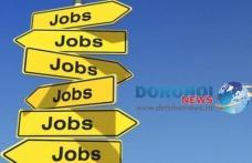 496 locuri de muncă vacante în Spaţiul Economic European